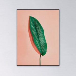 Mockup-Leaf-salmon-bg-60x80cm.jpg