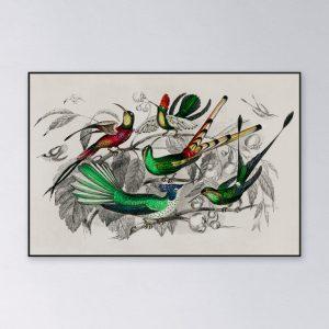 Akoestisch-paneel-kolibries-2048px.jpg