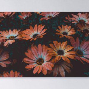 Wandpaneel-rechthoek-Daisy-2048px.jpg