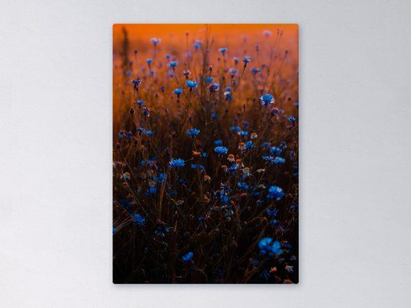 Wandpaneel-rechthoek-bloemenveld-2048px.jpg