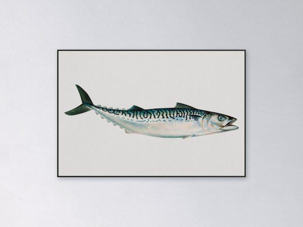 Akoestisch-paneel-makreel-2048px.jpg