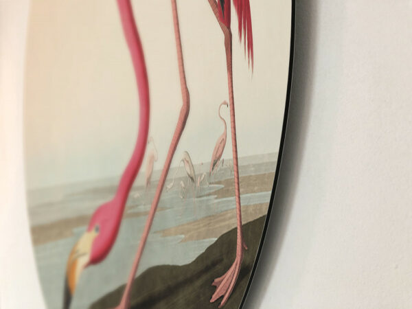 Flamingo-dibond-rand.jpg