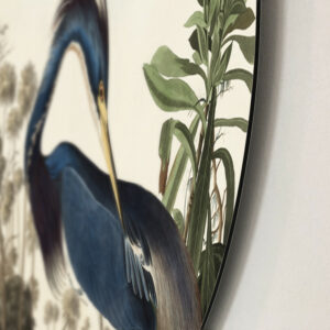 Louisiana-Heron-dibond-rand.jpg