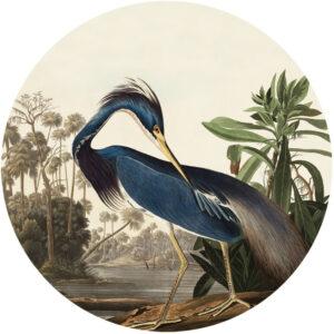 behangcirkel-louisiana-heron-1000px.png