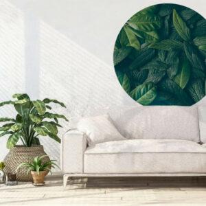 bladeren-behangcirkel.jpg